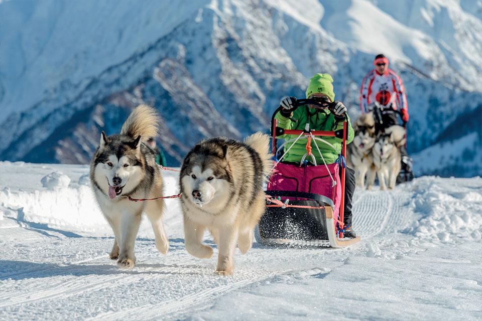 Village_club_vacances_alpes-de-haute-provence_rechastel_mushers-et-raquettes