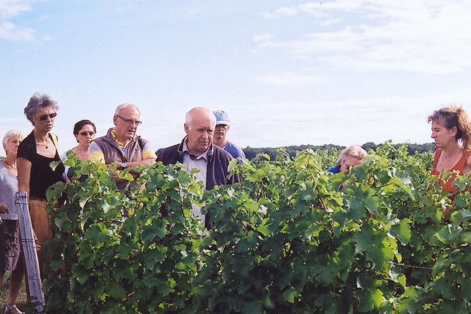 Village_club_vacances_centre-loire-et-bourgogne-la-saulaie-vigne