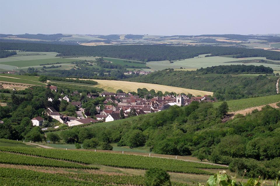 Village_club_vacances_centre-loire-et-bourgogne-la-vallee-de-yonne-vignoble