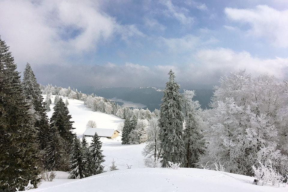 Idée Rando : Backcountry dans le Jura
