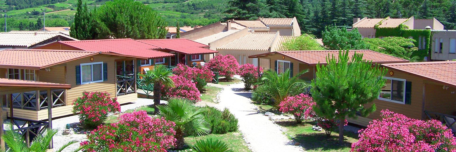 Sous le soleil du Roussillon - Torre del Far