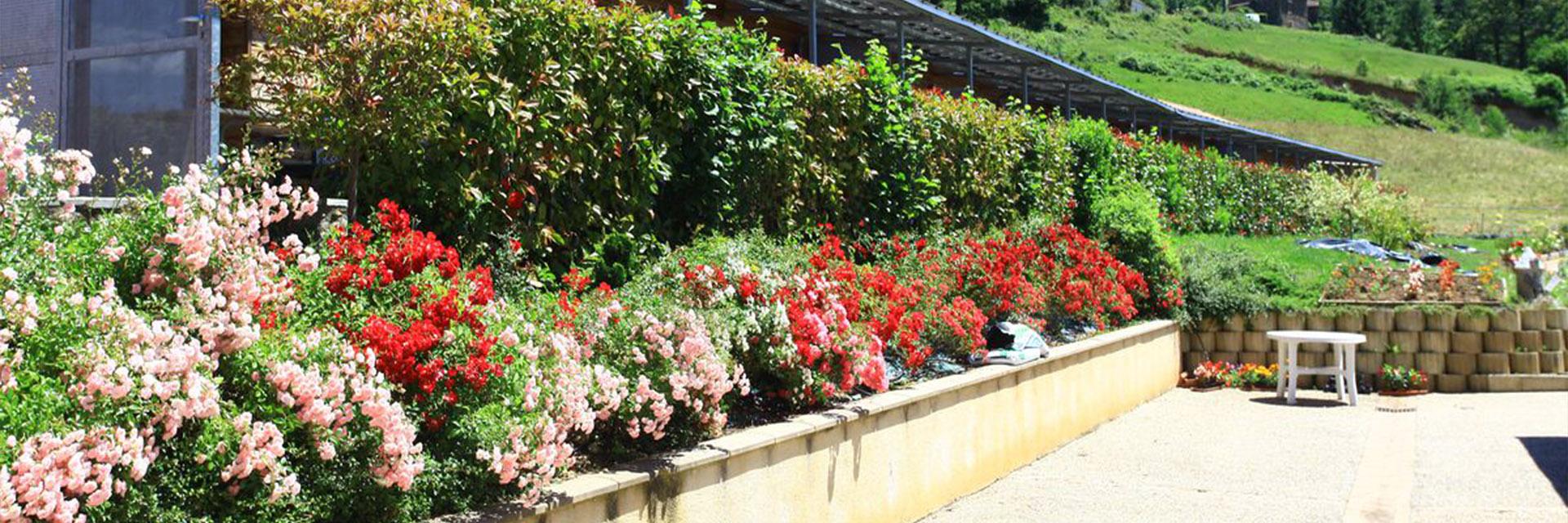 Village_club_vacances_périgord-quercy-terrou-fleurs-jardin