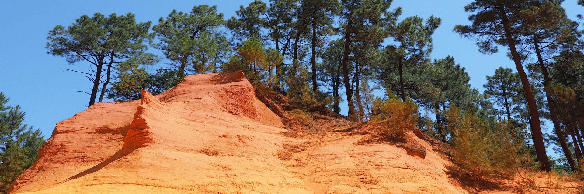 Escapade et couleurs de la Haute-Provence - Le Cloître des Dominicains