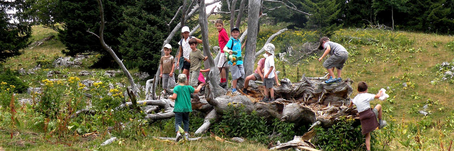 Village_club_vacances_provence_L'Escandille-club-enfants