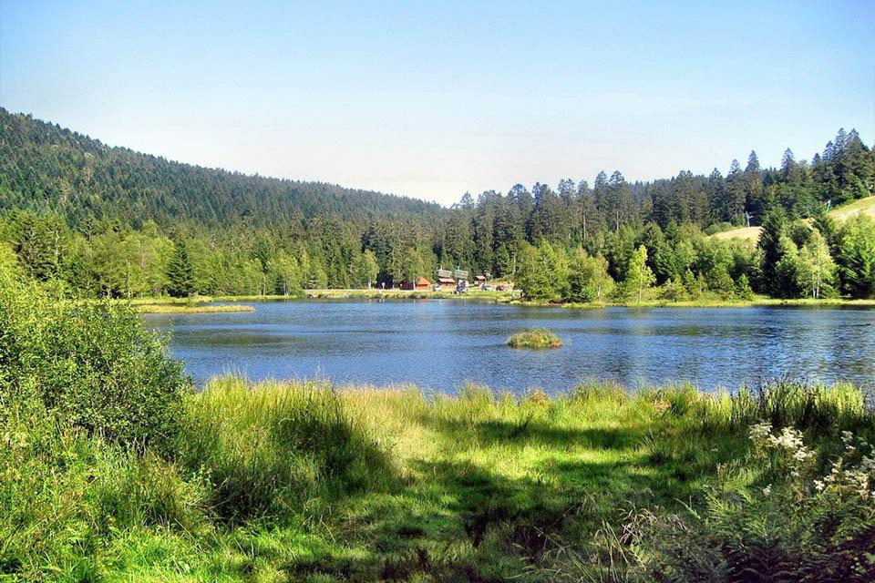 village-club-cap-france-vosqes-alsace-la-bolle-lac-paysage