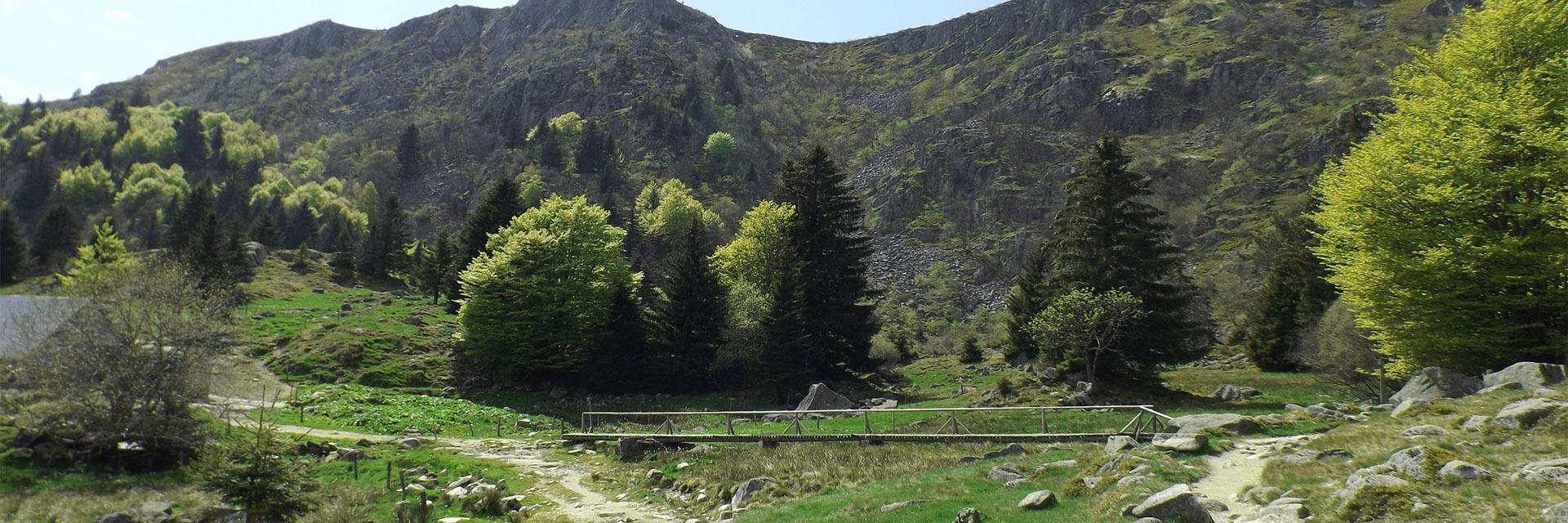 Randonnez dans les Vosges - La Bolle