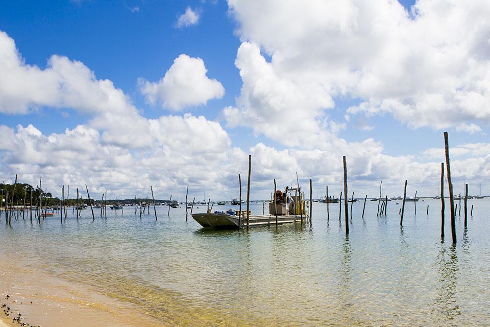 Idée Rando : Pêche à pied écologique