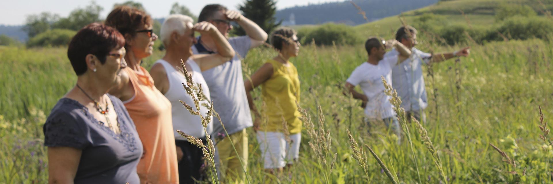 Découverte du Haut-Jura - Le Duchet