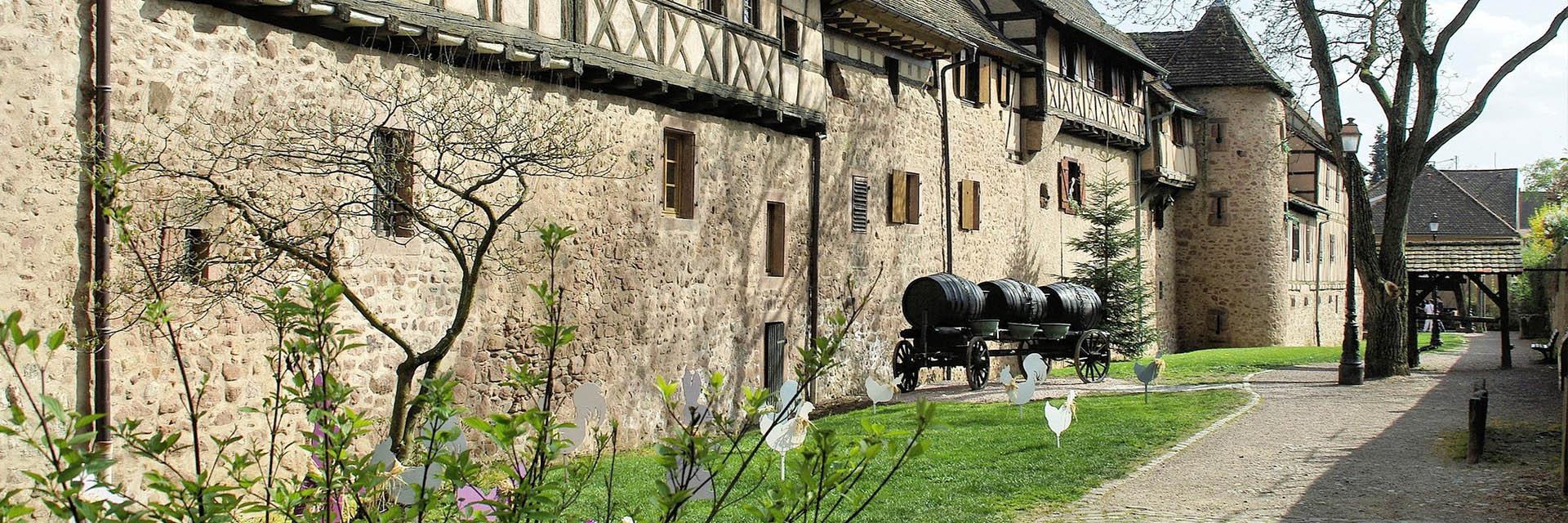 Des Vosges à l'Alsace - Les 4 Vents