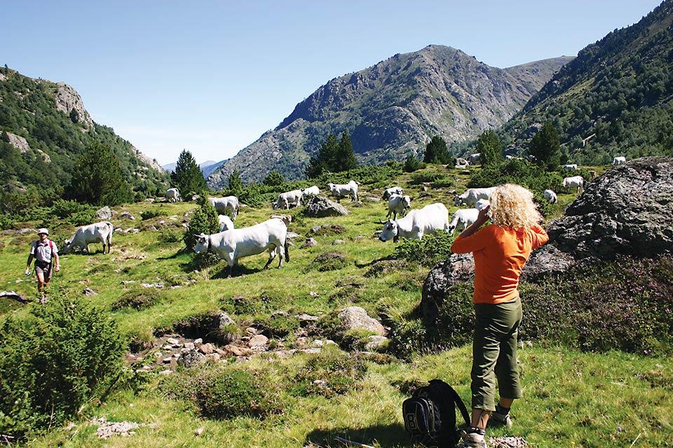 Idée Rando : Randonnée en Haute Ariège