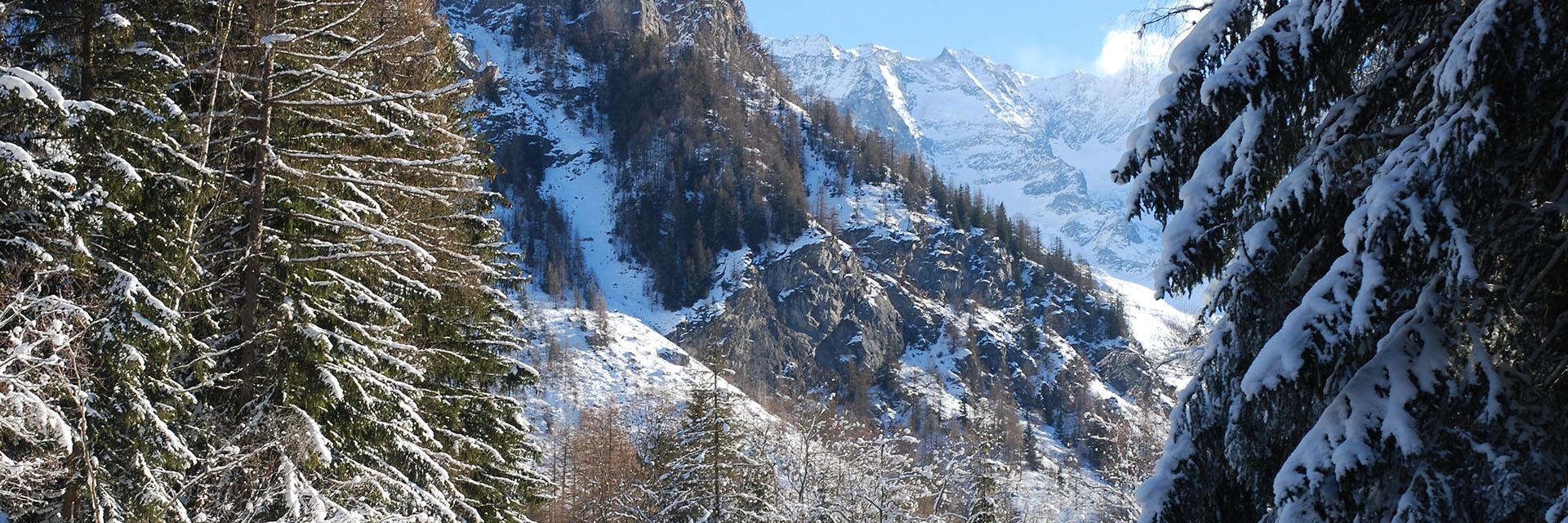 Au coeur de la Vanoise - Chalet La Vigogne