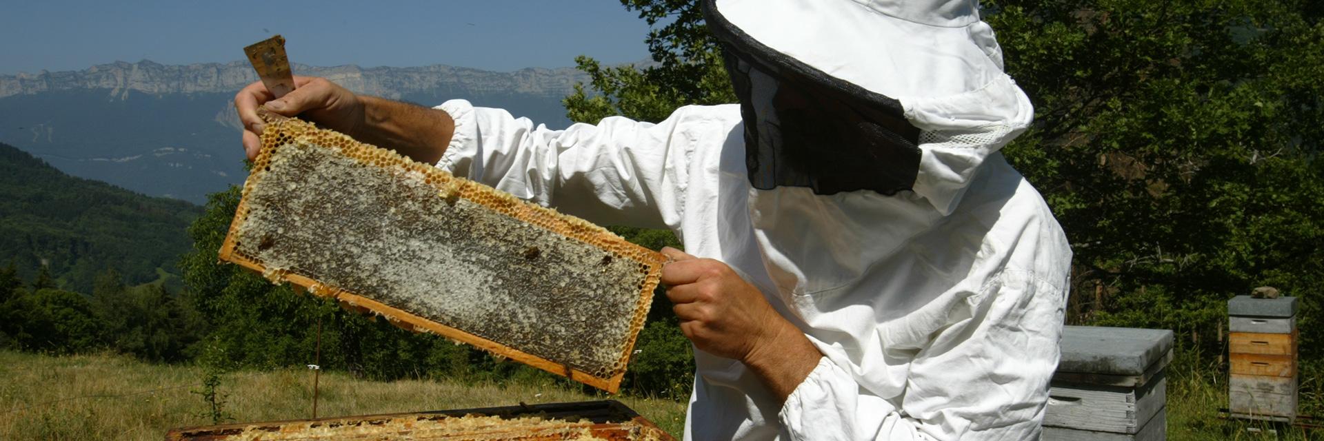 village-vacances-souffle-vert-apiculteur