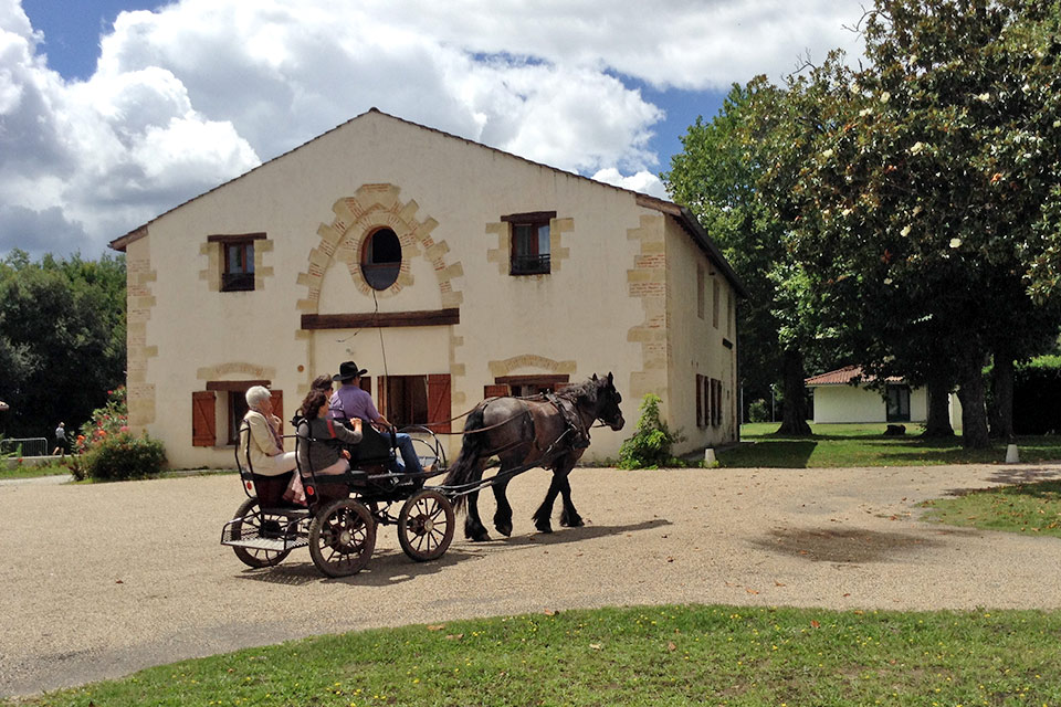 village-vacances-chateau-de-moulerens-activite
