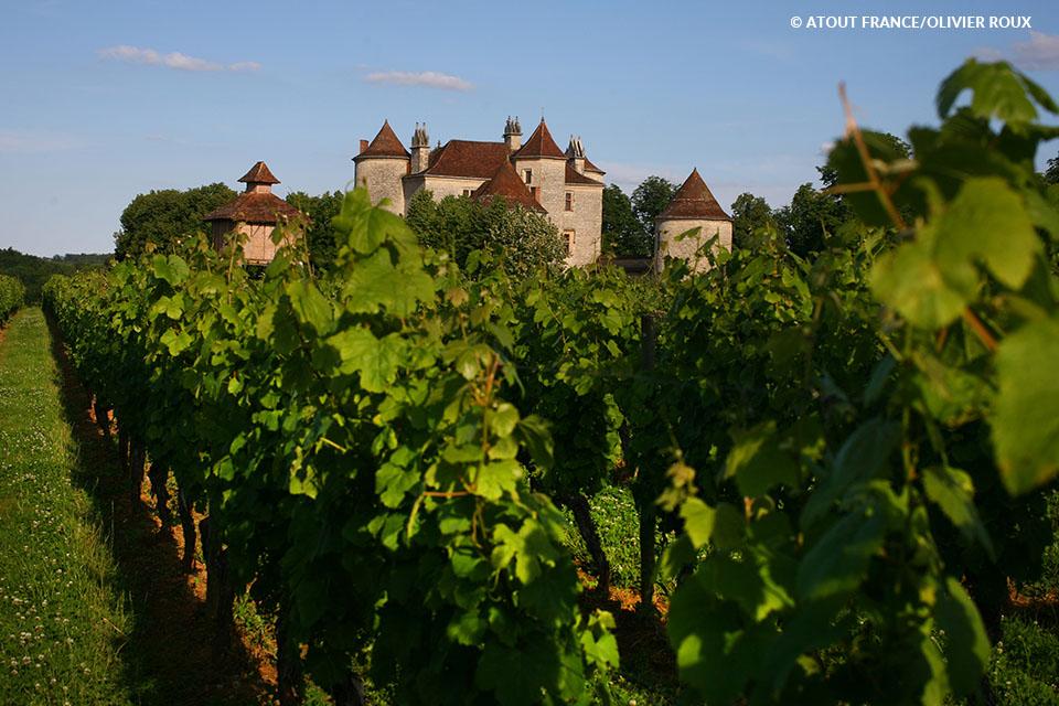 Vignoble du Château Lagrezette sur la Route du vin Cahors