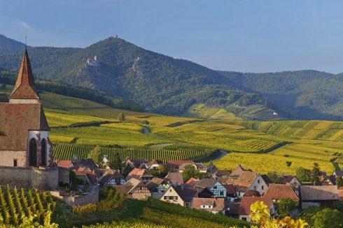 Vignoble grand cru Gloeckelberg sur la Route des Vins d'Alsace