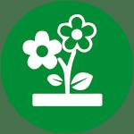 Botanique & co title=